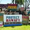 Thumbnail image for Hawaii's Big Island Bans GMO Crops and Biotech Companies