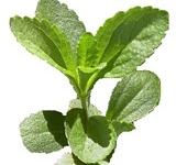 Thumbnail image for Cancers Kryptonite…Stevia rebaudiana