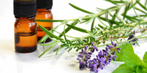 Thumbnail image for Essential Oils & Cancer