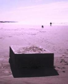 Post image for Mysterious Metal Boxes Emitting Strange Sounds Sighted on Coastal Beaches