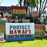 Hawaii's Big Island Bans GMO Crops and Biotech Companies