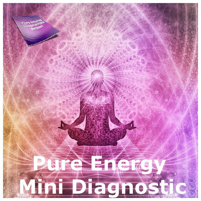 Pure Energy Mini Diagnostic