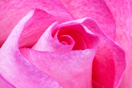 Love, Awareness and Intention – Essential Keys to Transformation